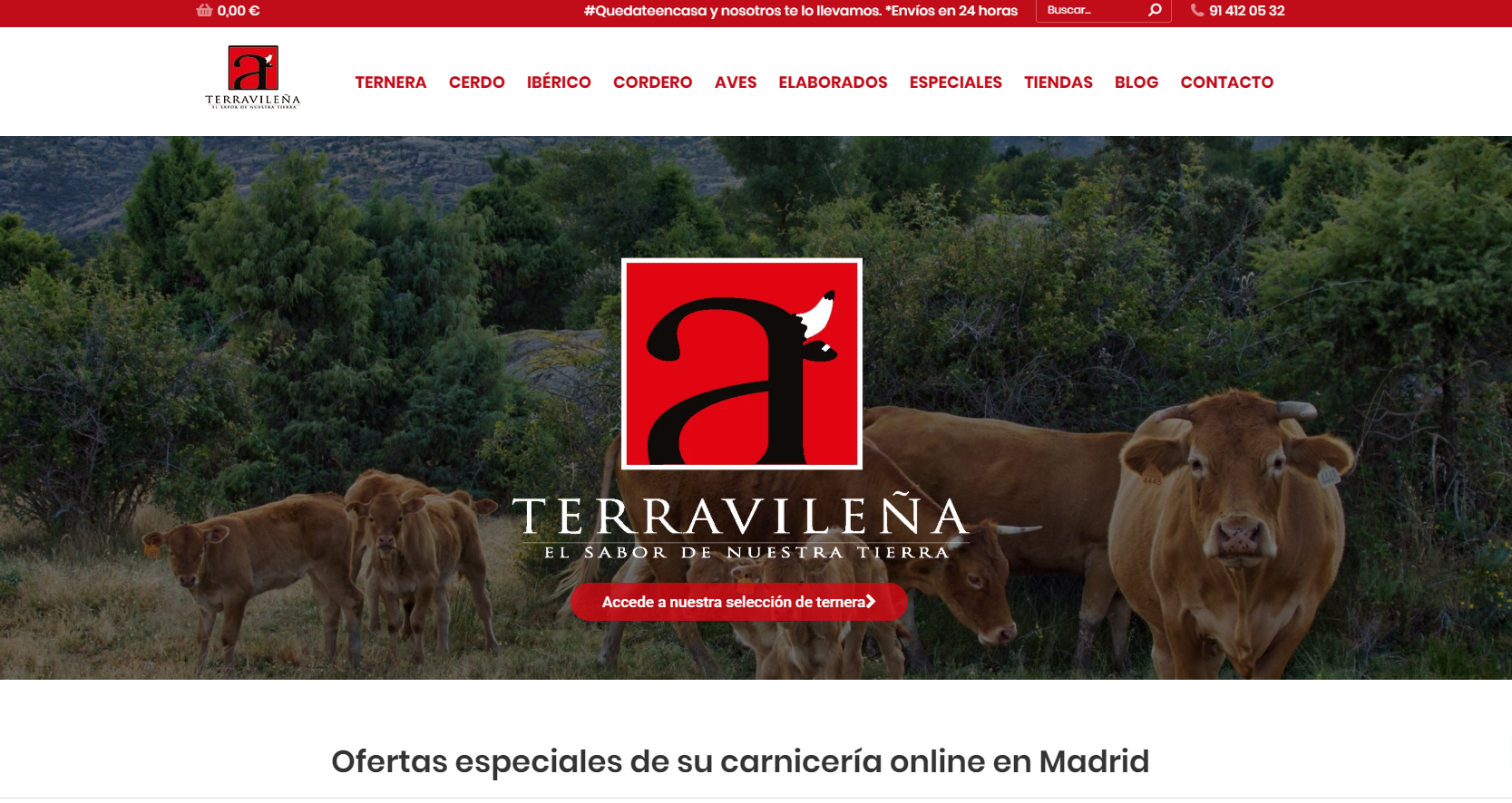 Vender mis productos en Internet - Terravileña
